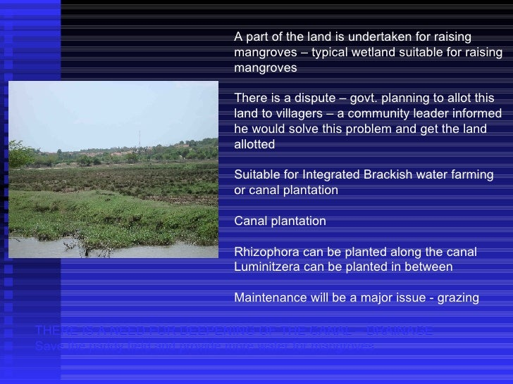 A part of the land is undertaken for raising mangroves – typical wetland suitable for raising mangroves There is a dispute...