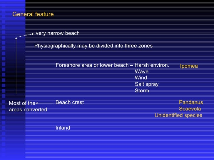 General feature very narrow beach Physiographically may be divided into three zones Foreshore area or lower beach – Harsh ...