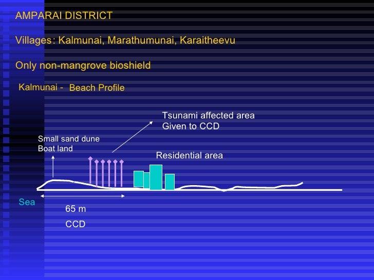 AMPARAI DISTRICT Villages : Kalmunai, Marathumunai, Karaitheevu  Only non-mangrove bioshield Kalmunai - Beach Profile Sea ...