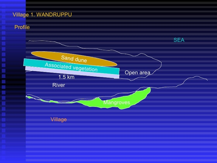 Village 1. WANDRUPPU Sand dune Associated vegetation Village River Mangroves Open area 1.5 km SEA Profile