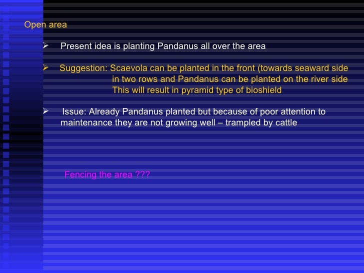 <ul><li>Open area </li></ul><ul><ul><li>Present idea is planting Pandanus all over the area </li></ul></ul><ul><ul><li>Sug...