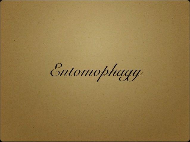 Entomophagy
