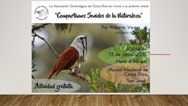 COMPARTAMOS SONIDOS DE LA NATURALEZA Roberto Vargas Masís Investigador Universidad Estatal a Distancia