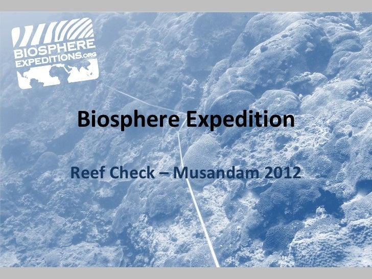 Biosphere ExpeditionReef Check – Musandam 2012