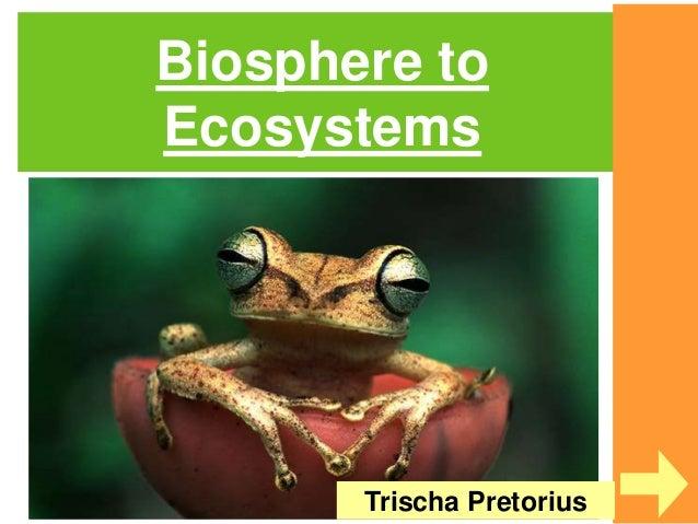 Biosphere to Ecosystems Trischa Pretorius