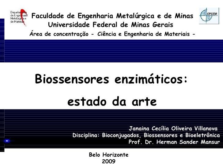 Faculdade de Engenharia Metalúrgica e de Minas      Universidade Federal de Minas Gerais Área de concentração - Ciência e ...