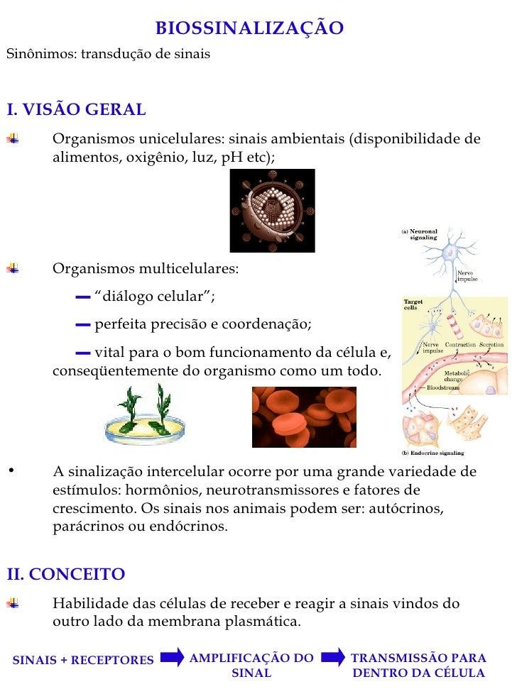 BIOSSINALIZAÇÃO <ul><li>Sinônimos: transdução de sinais </li></ul><ul><li>I. VISÃO GERAL </li></ul><ul><li>Organismos unic...