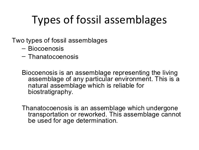 dating using fossil assemblages zone