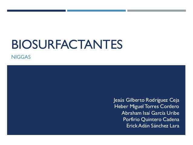 BIOSURFACTANTES NIGGAS  Jesús Gilberto Rodríguez Ceja Heber Miguel Torres Cordero Abraham Isaí García Uribe Porfirio Quint...
