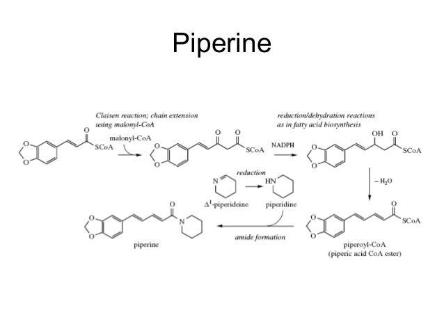 Biosynthesis Of Ergometrine Pdf Download libre fighter libertadores allen