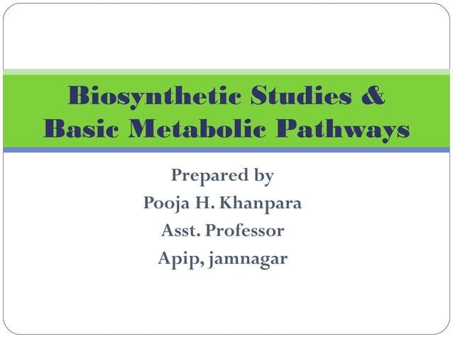 Prepared by Pooja H. Khanpara Asst. Professor Apip, jamnagar Biosynthetic Studies & Basic Metabolic Pathways