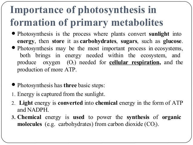 Photosynthesis H2O + light + ADP + P ---> O2 + ATP + e- After the above steps occur in photosystem II, the electron is f...