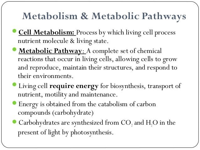 ~ produce energy to the cell ~ requires energy glucose to glycogen