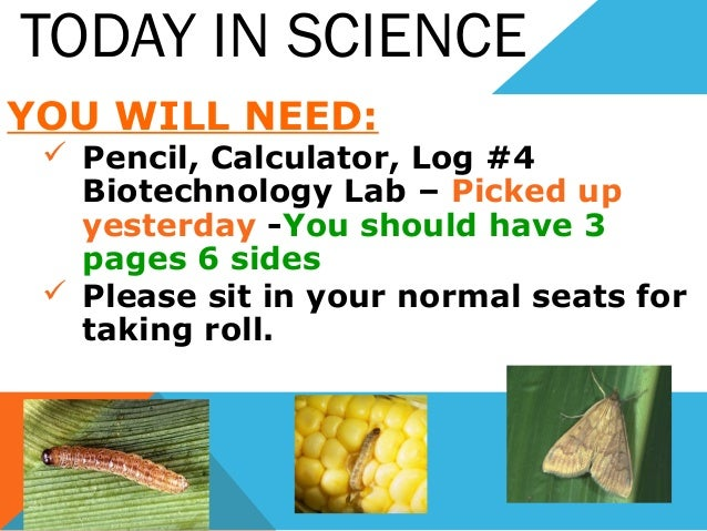 TODAY IN SCIENCE YOU WILL NEED:  Pencil, Calculator, Log #4 Biotechnology Lab – Picked up yesterday -You should have 3 pa...