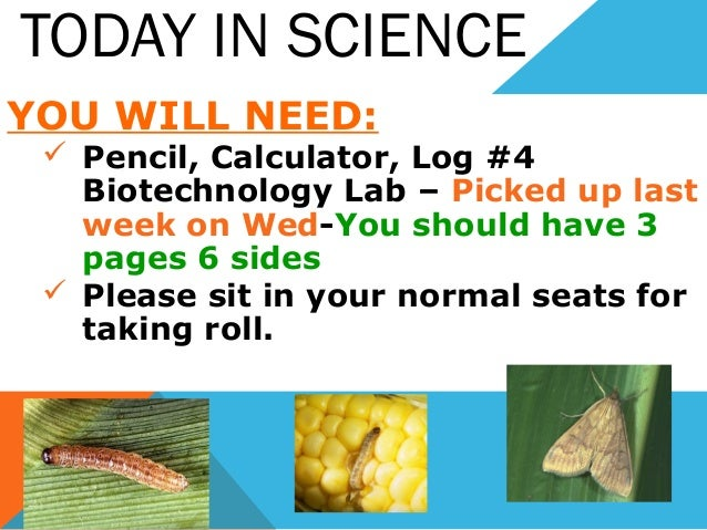 TODAY IN SCIENCE YOU WILL NEED:  Pencil, Calculator, Log #4 Biotechnology Lab – Picked up last week on Wed-You should hav...
