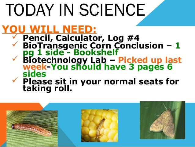 TODAY IN SCIENCE YOU WILL NEED:  Pencil, Calculator, Log #4  BioTransgenic Corn Conclusion – 1 pg 1 side - Bookshelf  B...