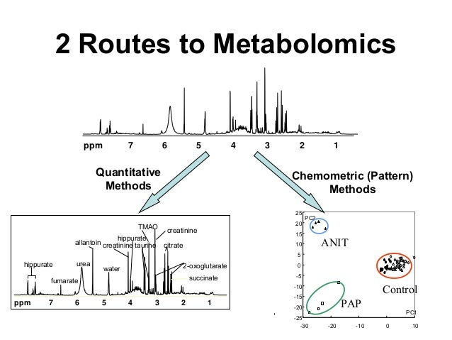 2 Routes to Metabolomics 1234567ppm hippurate urea allantoin creatinine hippurate 2-oxoglutarate citrate TMAO succinatefum...