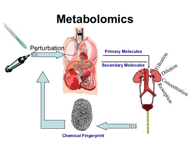 Biotech2012 spring 3_metabolomics Slide 3