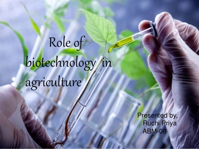 BIOTECHNOLOGY IN AGRICULTURE PDF
