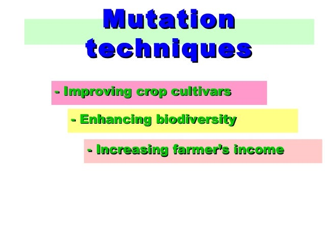 biotechnology and food security Spread potentials for attaining food security and economic empowerment, at  household  keywords: agricultural biotechnology, potentials, food security and .