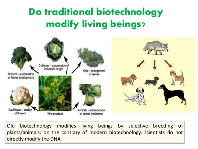 Biotechnology 1.