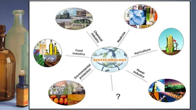 Applications of Biotechnology on Food, Agriculture - PowerPoint PPT Presentation