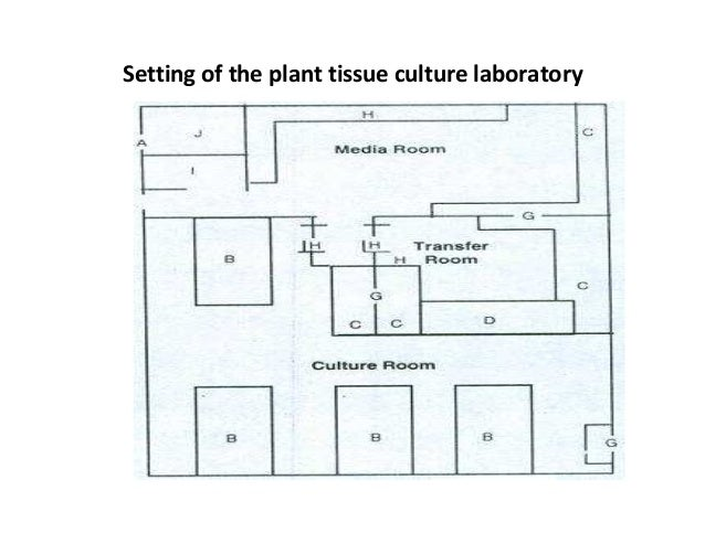 Setting Up A Tissue Culture Room