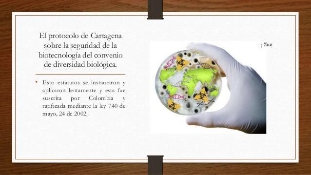 Biotecnologia en colombia pdf to jpg