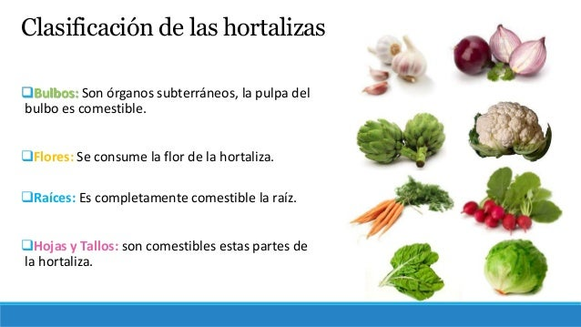 Biotecnolog a frutos y hortalizas b sico for Horticultura definicion