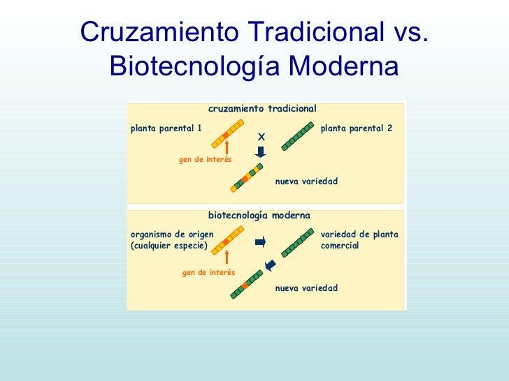 Biotecnologia for Oficina tradicional y moderna