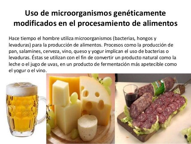 Biotecnologia de los alimentos - Alimentos con levadura de cerveza ...