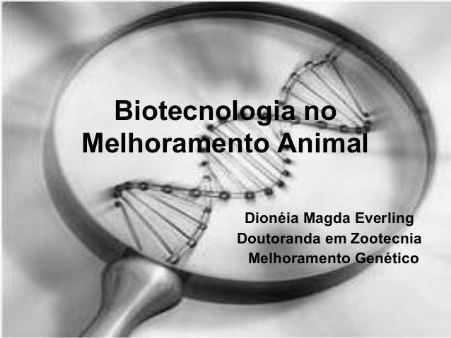 Biotecnologia no Melhoramento Animal Dionéia Magda Everling Doutoranda em Zootecnia Melhoramento Genético