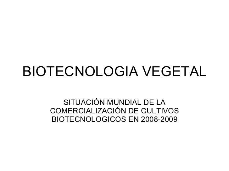 BIOTECNOLOGIA VEGETAL SITUACIÓN MUNDIAL DE LA COMERCIALIZACIÓN DE CULTIVOS BIOTECNOLOGICOS EN 2008-2009