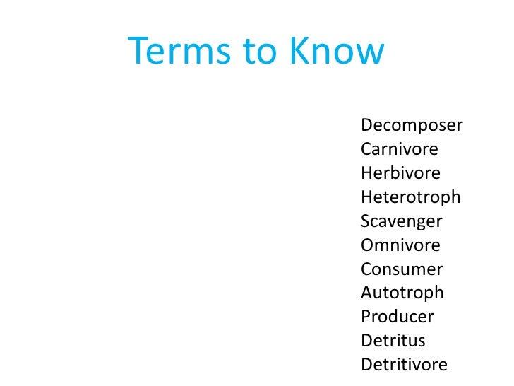 Terms to Know           Decomposer           Carnivore           Herbivore           Heterotroph           Scavenger      ...