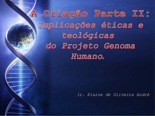 Ir. Elaine de Oliveira André