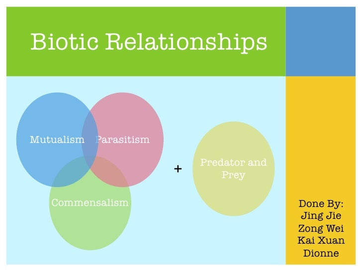 relationship between biotic and abiotic component