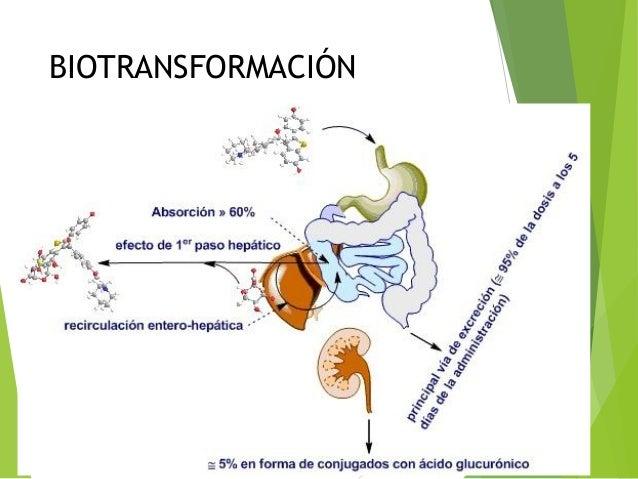 Biotransformación de fármacos