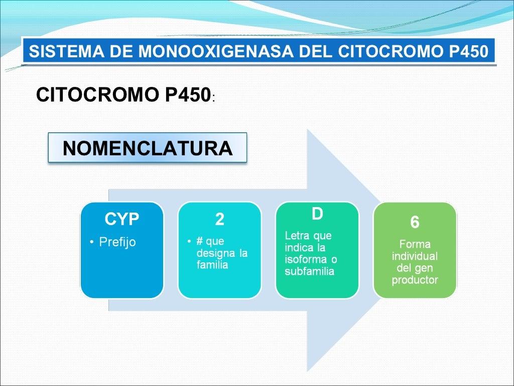 Biotransformacion y excrecion de farmacos