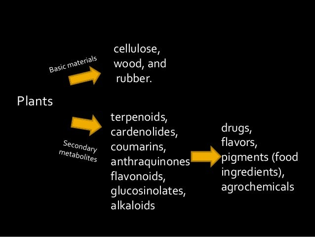 Secondary metabolites in plant cultures: applications and production.
