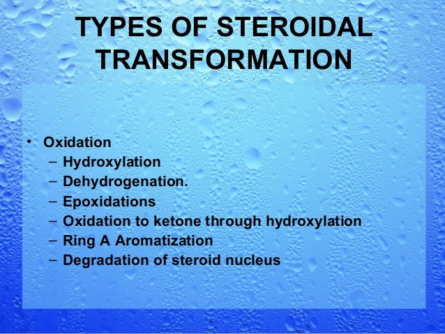 microbial biotransformation of steroids