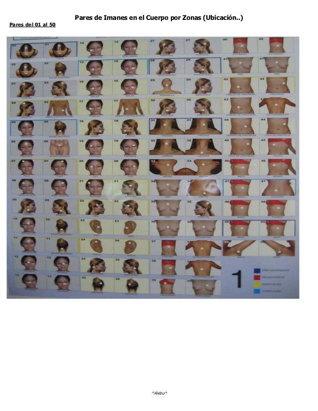 Pares de Imanes en el Cuerpo por Zonas (Ubicación..)Pares del 01 al 50                                            ^Alebu^