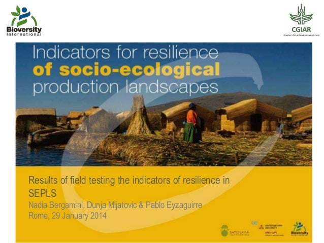 Results of field testing the indicators of resilience in SEPLS Nadia Bergamini, Dunja Mijatovic & Pablo Eyzaguirre Rome, 2...