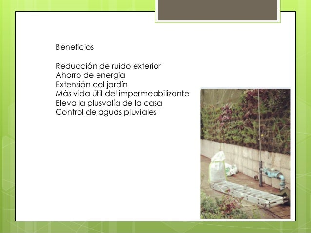 Biozotea Slide 3