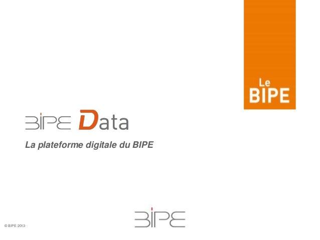 © BIPE 2013 La plateforme digitale du BIPE
