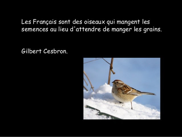Les Français sont des oiseaux qui mangent les semences au lieu d'attendre de manger les grains. Gilbert Cesbron.