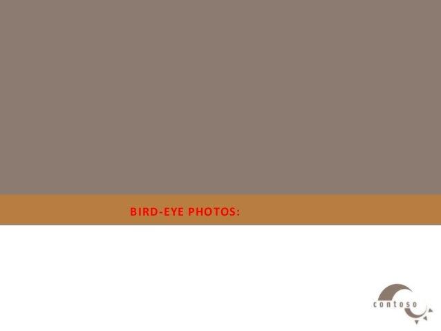BIRD-EYE PHOTOS: