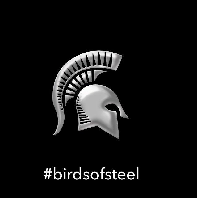 4cff42a5 Steelbird Helmets - Online bike accessories, helmets