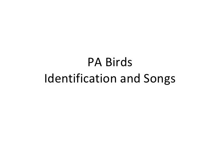 PA BirdsIdentification and Songs