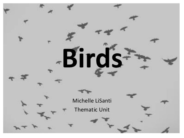 BirdsMichelle LiSantiThematic Unit