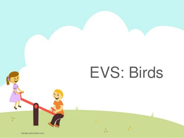 EVS: Birds theeducationdesk.com